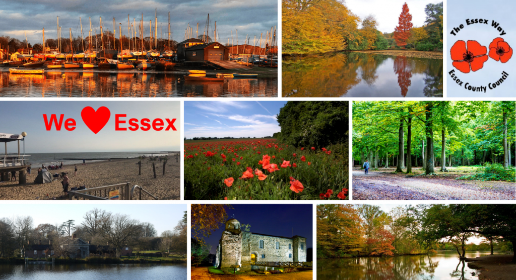 postcard of Essex sights