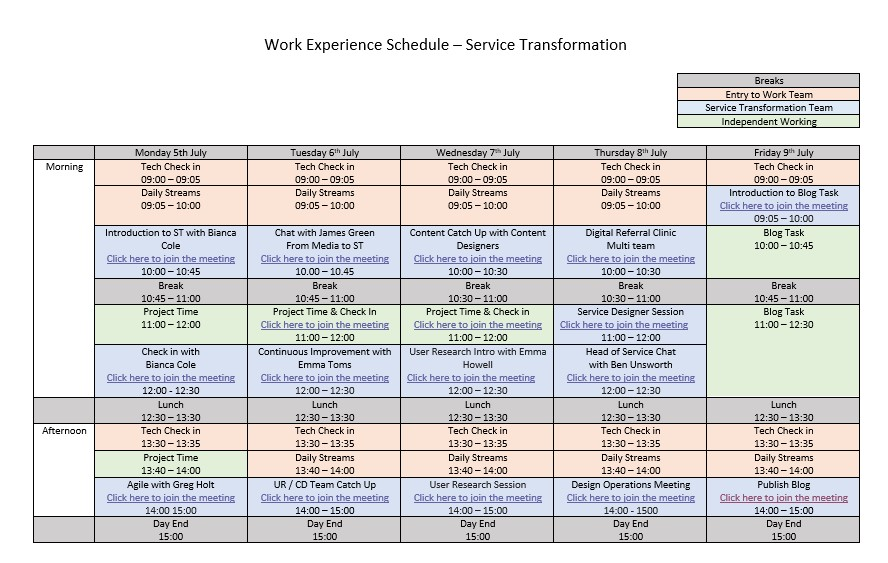 Timetable detailing session planned for work experience student