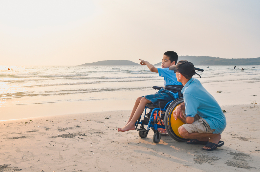 a male child on beach in wheelchair pointing to something in the sea to a male adult who is with them